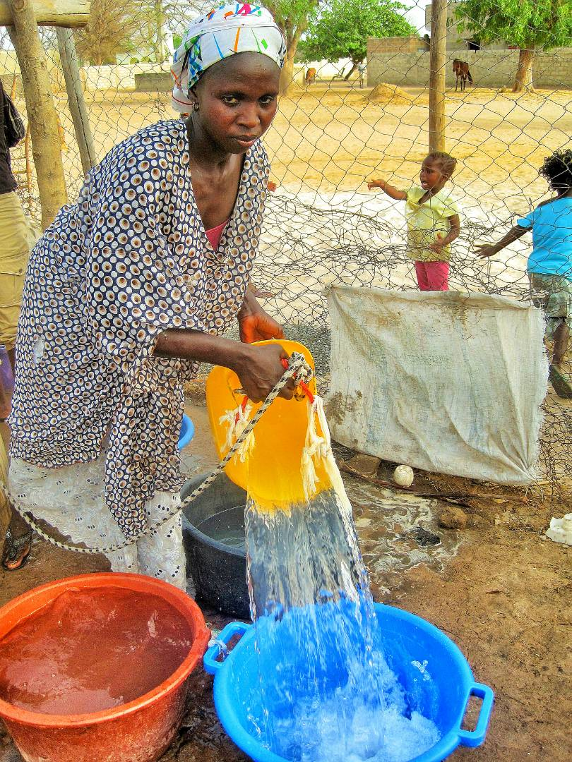 GSN Moringa Project - Senegal